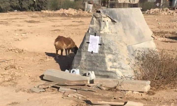 قوات الاحتلال تخطر بهدم بيت كلب في النقب المحتل