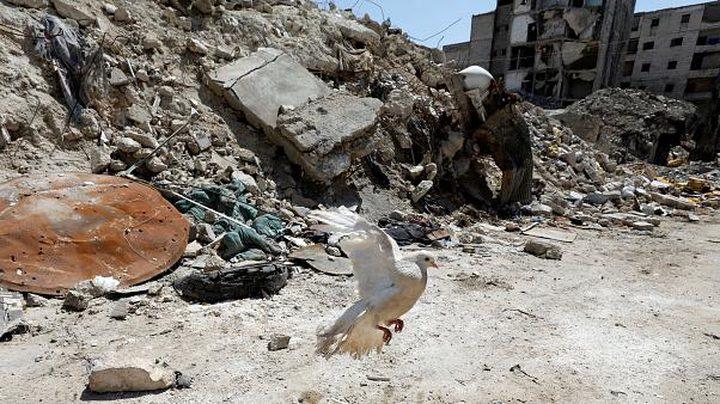 تقديرات أممية: أكثر من ألف قتيل غربي سوريا