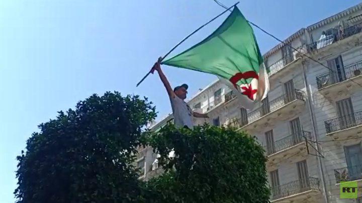 الجزائر.. تواصل الاحتجاجات المُطالبة بتسليم السلطة للشعب