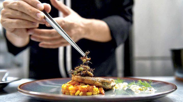 """افتتاح أول مطعم يقدم """"وجبات من الحشرات"""" في جنوب افريقيا"""