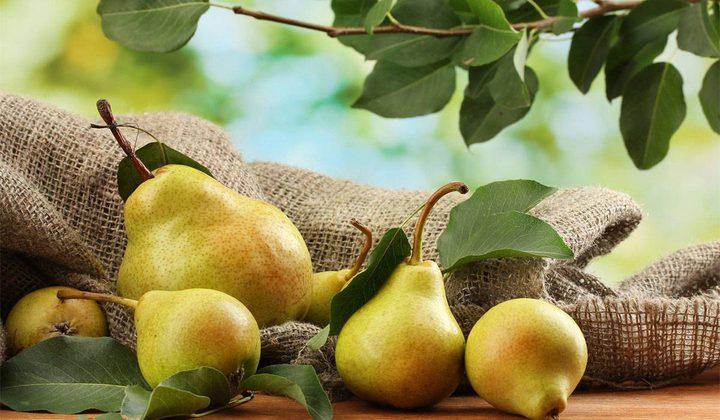 فوائد فاكهة الإجاص للعملية الهضمية