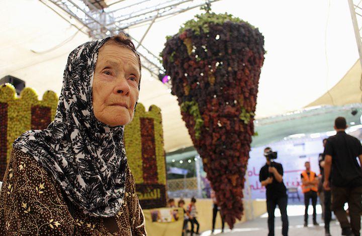 الخليل: افتتاح مهرجان أيام العنب الخليلي بالبلدة القديمة