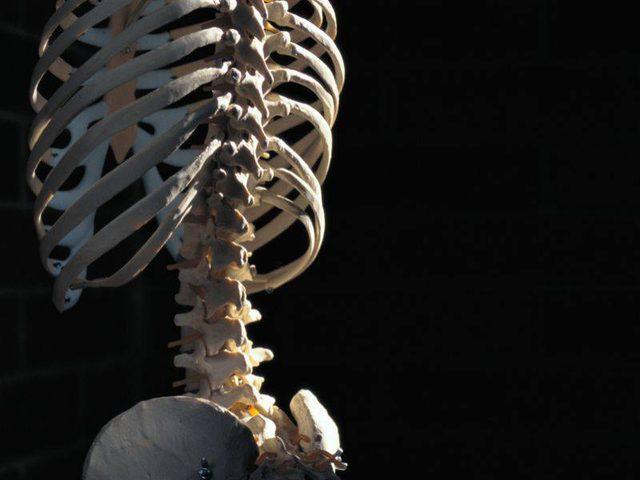 كيف تحافظ على عظامك قوية وتحميها من الكسور؟