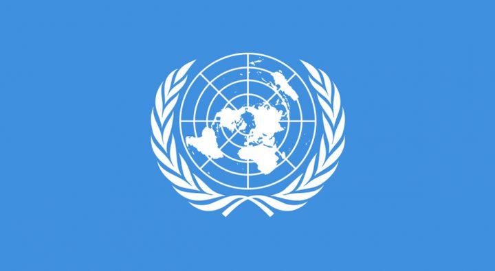"""الأمم المتحدة: الروهينغا يعيشون تحت خطر """"الإبادة"""""""