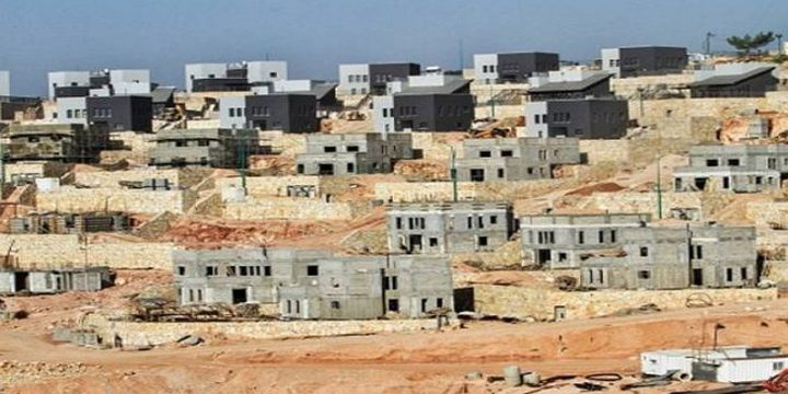 دغلس: مخطط احتلالي هيكلي جديد لتوسيع مستوطنة يتسهار