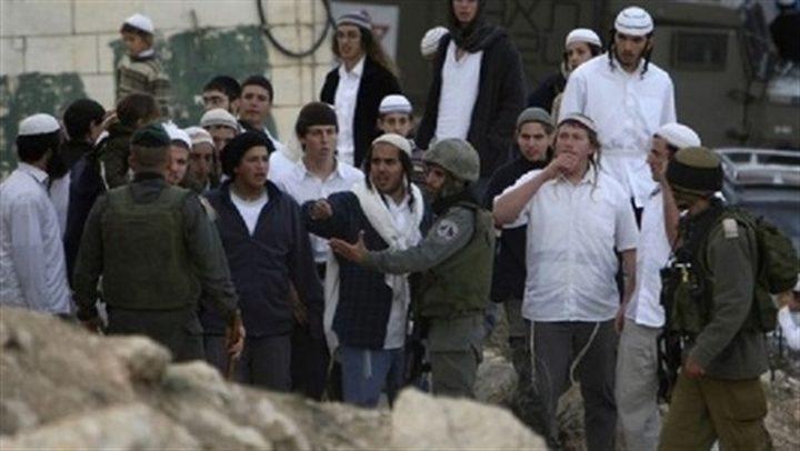 مستوطنون يقتحمون وسط مدينة الخليل