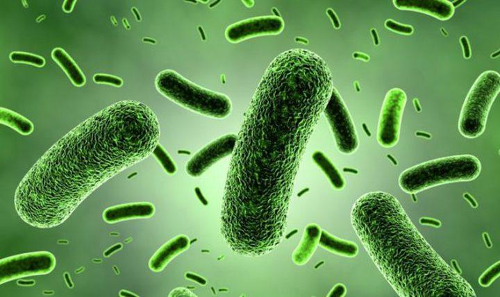 نصائح لحماية نفسك من الجراثيم والبكتيريا