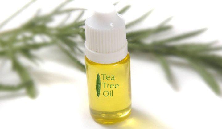 من الرأس حتى القدمين..7 فوائد لزيت شجرة الشاي