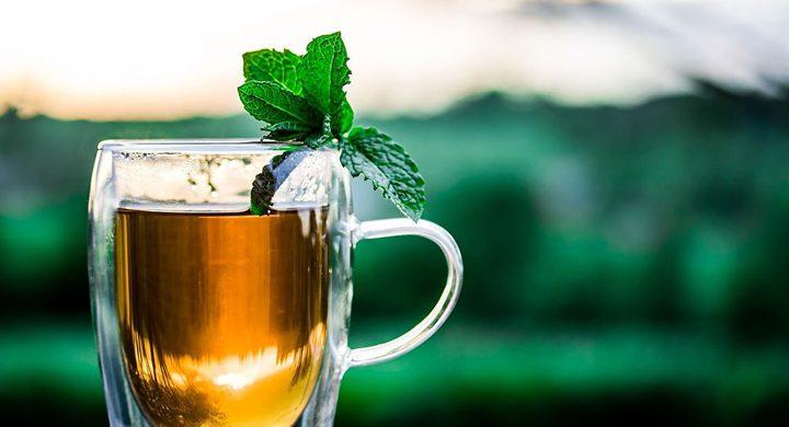 أيهما أفضل الشاي الأسود أم القهوة؟