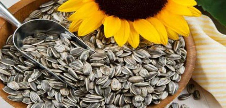 ما هي أبرز فوائد بذور دوار الشمس للبشرة ؟