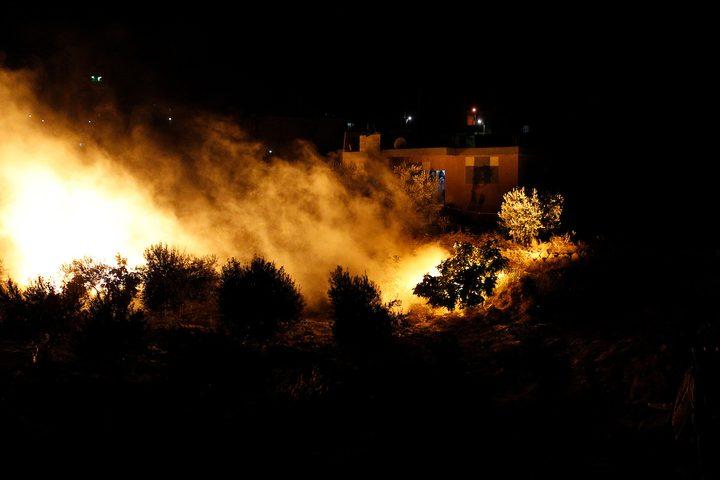 الدفاع المدني: احتراق 55 شجرة زيتون بمناطق متفرقة غرب جنين