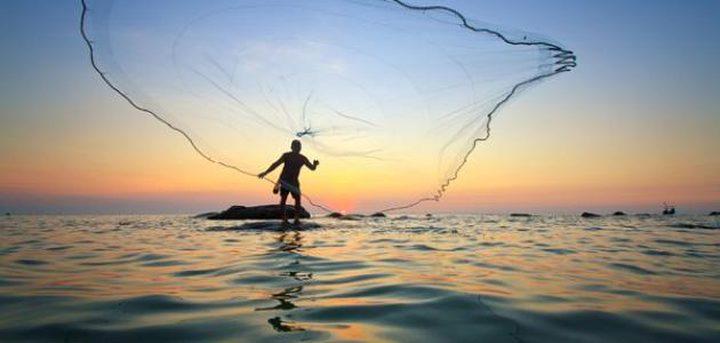 صيادون يضحون بسمكة تونه ضخمة تقدر قيمتها 3 ملايين دولار!