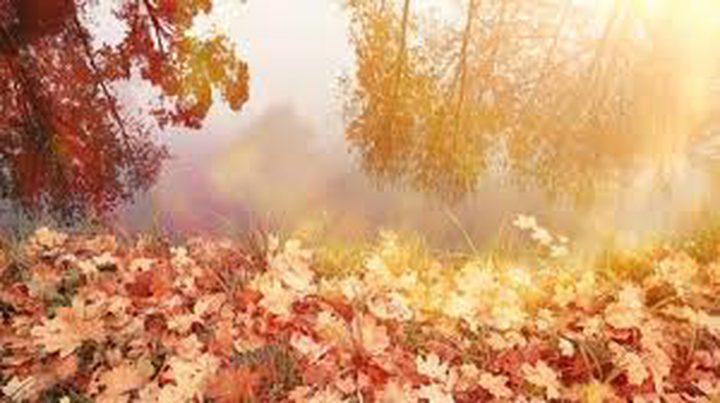 أهم النصائح للتخلص من اكتئاب فصل الخريف