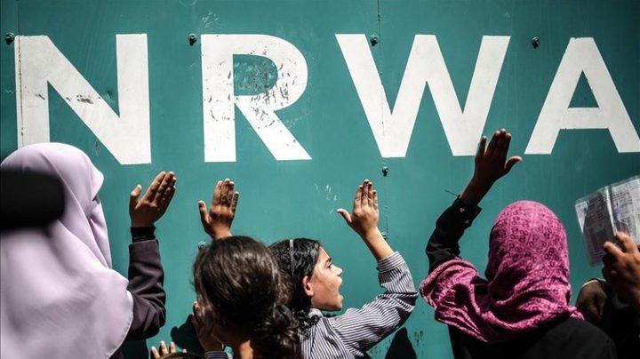 مختص: الحراك الداعم للأونروا غير مسبوق منذ تأسيسها