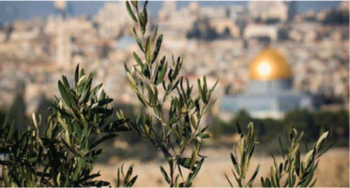 القاهرة تستضيف مؤتمرا للاستثمار في فلسطين