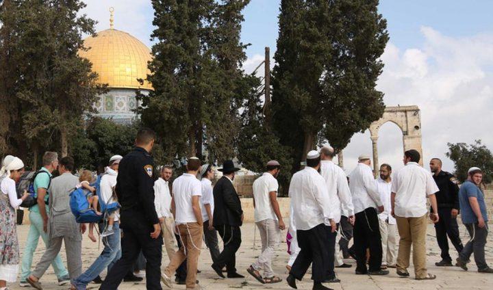 عشرات المستوطنين يقتحمون الأقصى بحراسة قوات الاحتلال