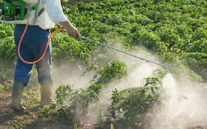 التعرض للمبيدات بكثرة يزيد من خطر الأزمات القلبية