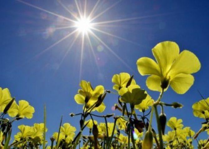 أجواء صافية وانخفاض على درجات الحرارة