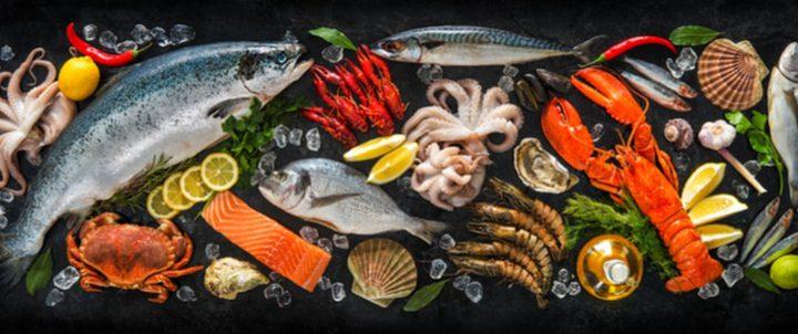 ما هي أهمية تناول الحامل للمأكولات البحرية يوميا ؟