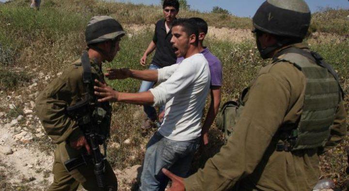 إصابة مواطن في اعتداء للمستوطنين خلال قطفه الزيتون
