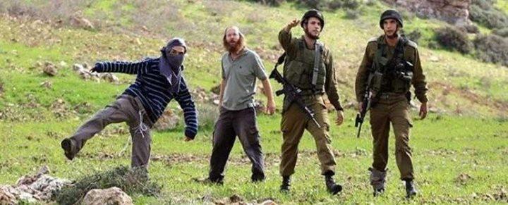 """""""الخارجية"""" تدعو لفتح تحقيق في جرائم الاحتلال"""