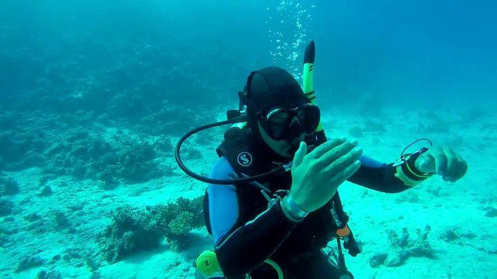 كيف ينظف الغواص أسنانه في قاع البحار ؟