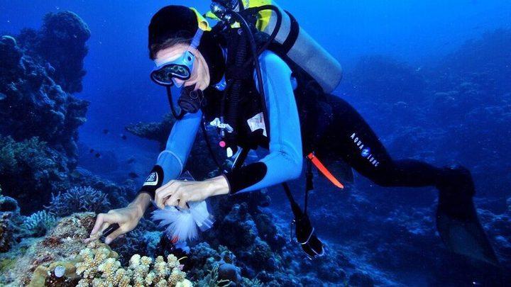 اكتشاف علاج مرض السل في قاع البحر