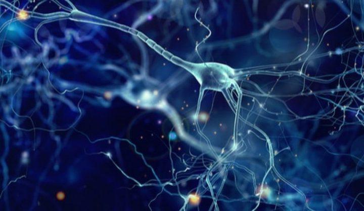 طرق طبيعية لتوازن الهرمونات في الجسم