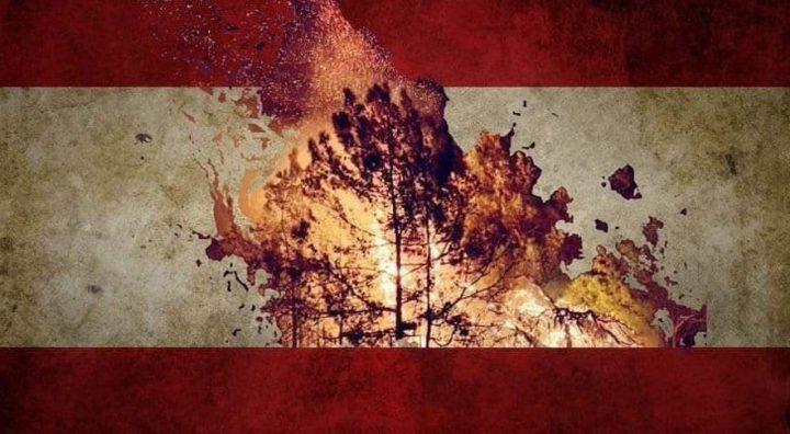 """مذيعة لبنانية تنهار بالبكاء خلال تغطيتها """"حرائق لبنان"""""""