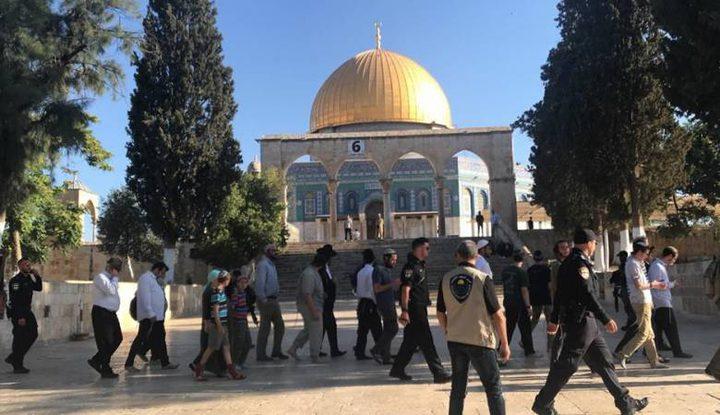 اقتحامات واعتقال خطيب المسجد الأقصى