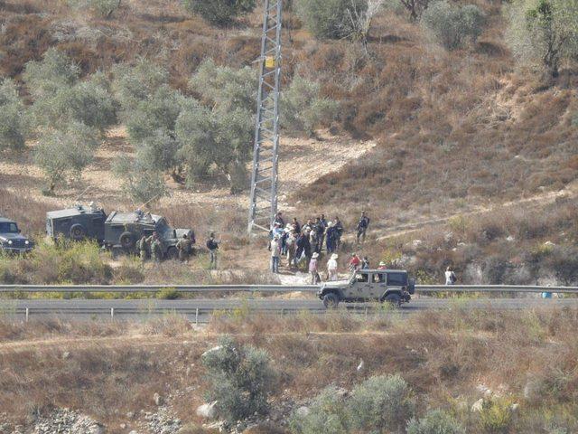 إصابات باعتداءات للمستوطنين على قاطفي الزيتون جنوب نابلس