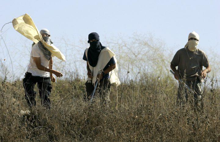 بيت لحم: مستوطنون يهاجمون قاطفي الزيتون