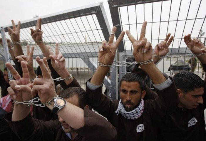 أبو بكر: قضية الأسرى بحاجة إلى ضغط دولي وعربي