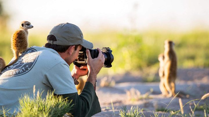 شاهد أفضل صورة للحياة البرية لعام 2019!
