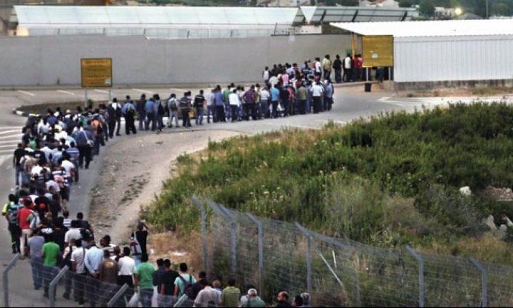 تقرير: ثلث العمال يشترون تصاريحهم عبر سماسرة