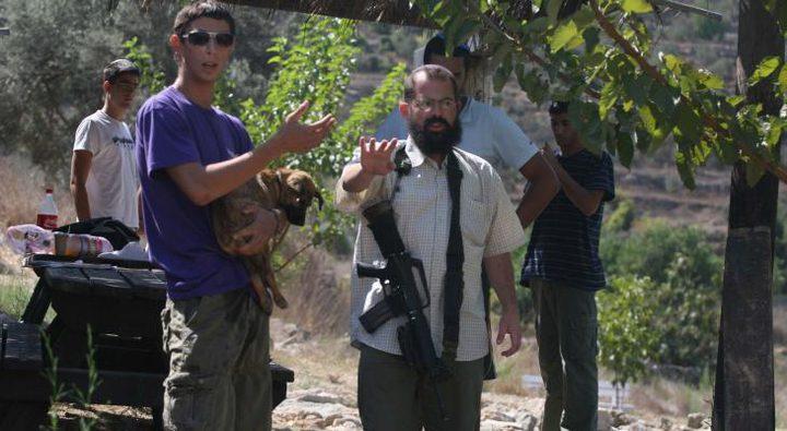 مستوطنون يستولون على معدات قطف الزيتون بقرية ياسوف