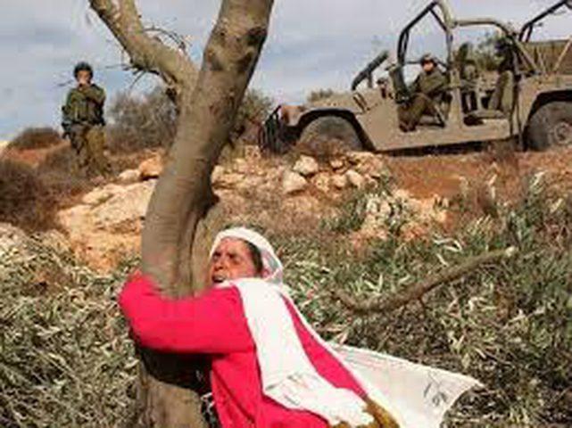 المؤتمر الأول للمرأة الفلسطينية بعد انقطاع دام قرابة ثماني عقود