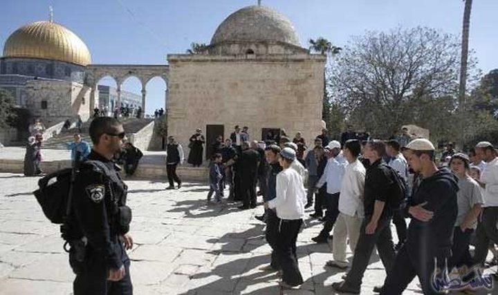 مستوطنون يقتحمون الأقصىبحماية قوات الاحتلال