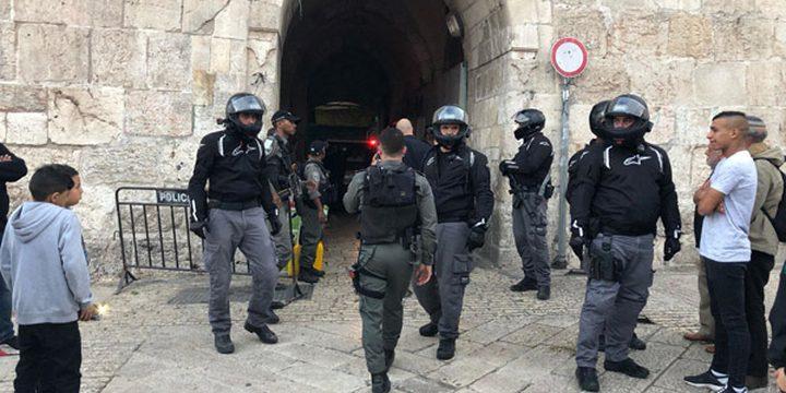 الاحتلال يعتقل 3 مواطنين من أمام باب العامود