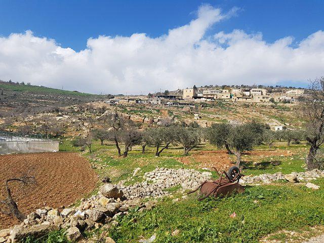 الصليب الاحمر يتم مشروع حظائر أغنام لأهالي قرية يانون جنوب نابلس