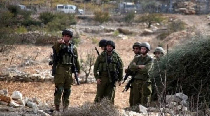 نابلس: الاحتلال يطرد قاطفي الزيتون من أراضيهم