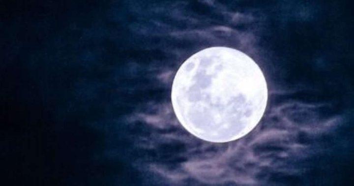 شاهد ناسا تنشر صور لعينات نادرة من القمر