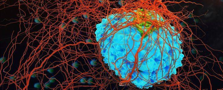 تطوير فيروس جديد لقتل الخلايا السرطانية