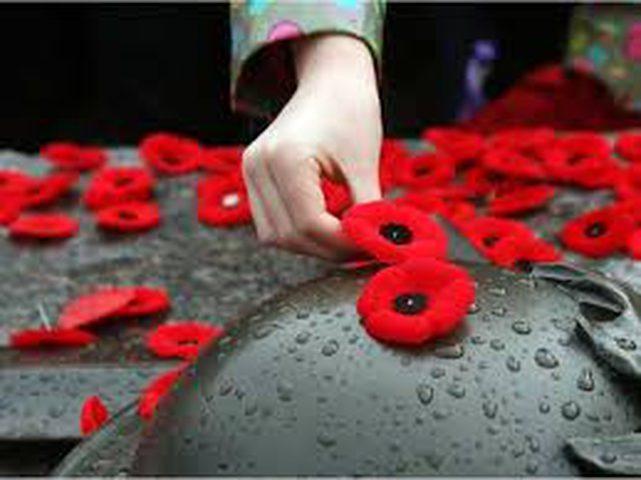 لماذا يضع البريطانيون زهرة حمراء على صدورهم في هذا اليوم ؟
