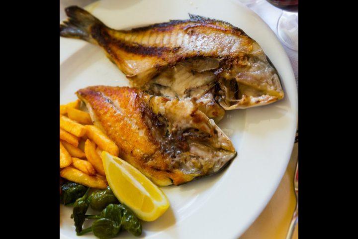 سمك دنيس مقلي