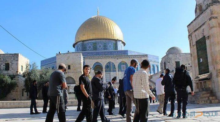 مستوطنون يقتحمون الاقصى بحماية شرطة الاحتلال