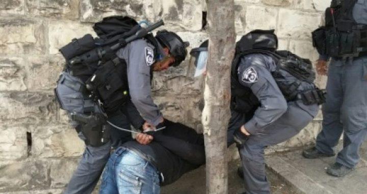 شرطة الاحتلال تعتقل 3 شبان
