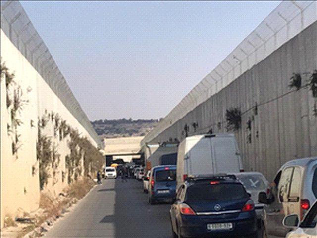 الاحتلال يحتجز عشرات المركبات شمال غرب القدس