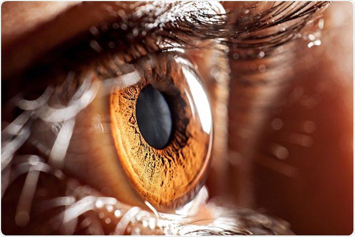 طرق حماية العين من مضاعفات تلوث الهواء