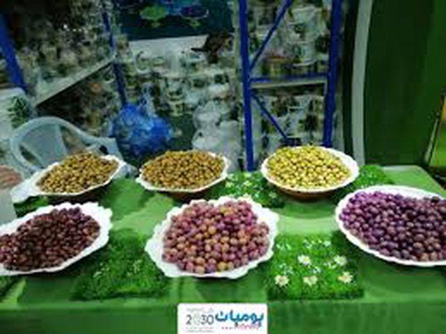 انطلاق فعاليات مهرجان الزيتون الأول في مدينة طولكرم